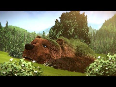 Как Приручить Медведя Мультфильмы 2021